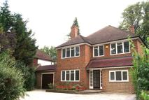 Coombe Lane West house to rent