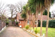 Bungalow to rent in Haven Close, SW19