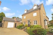 semi detached house for sale in Chestnut Close...