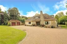 2 bed Detached house in Chelveston Cum Caldecott...