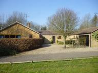 Detached Bungalow in SUFFOLK, Wickhambrook