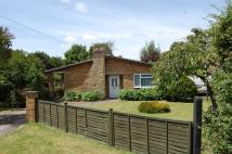 Bungalow in Wilton Road, Feltwell...