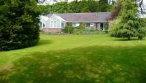 Detached property for sale in Links Drive, Lostock...