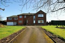 Detached property in Lang Riggs...