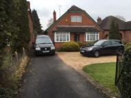 Bungalow to rent in Crockhamwell Road...