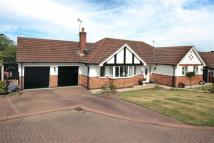 Detached Bungalow in Holly Bank, Audlem...