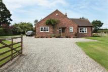Detached Bungalow in Colleys Lane, Nantwich...
