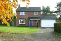 3 bed Detached home in Brassington Street...