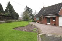 Detached Bungalow in Cheshire Street...