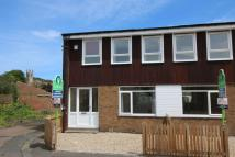 3 bed semi detached house to rent in Burnside, Belford, NE70