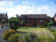 Detached Bungalow to rent in Castle View, Hatton...