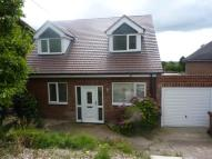 Detached property to rent in Ashby Road...