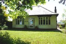 3 bed Detached Bungalow for sale in Low Lane, Low Lane, Yarm...