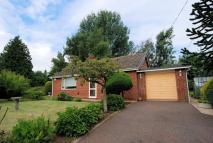 2 bed Detached Bungalow in Gressenhall