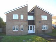 Studio apartment to rent in Mollyfair Close, Ryton...