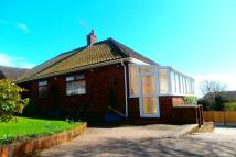 Detached Bungalow in Birches Head Road...