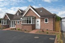 3 bed Semi-Detached Bungalow for sale in Haslucks Green Road...