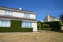 property to rent in Blenheim Close, Newton Abbot, TQ12