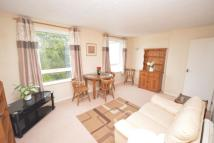 Flat to rent in Higher Warberry Road...