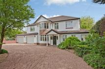 5 bedroom Detached house in Druidstone Road...