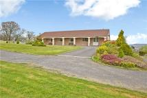 Detached property in Brynsadler...