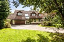 Lisvane Road Detached house for sale