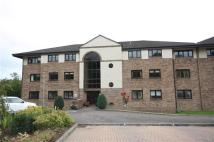 3 bed Flat in Ravenscourt...