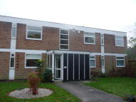 2 bed Apartment to rent in Green Court, Hall Green