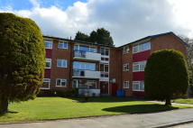 2 bedroom Apartment to rent in Harwood Grove, Shirley