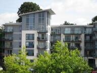 McKenzie Court Apartment to rent