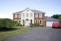 Detached home in Ayleswater, Aylesbury