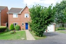 Randle Way Detached house for sale