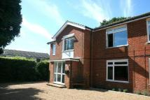 Flat to rent in Oxenturn Road  Wye