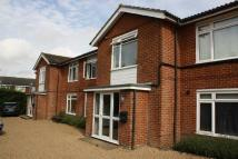 Flat to rent in Oxenturn Road  Wye  TN25