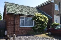 Bungalow to rent in Norton Hill Drive...