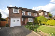 semi detached property to rent in Albury Drive, Pinner...
