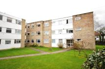 Lonsdale Close Apartment to rent