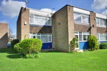 2 bed Terraced house to rent in Tulip Court...