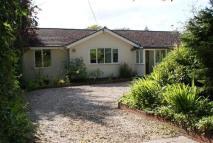Bungalow to rent in Beechleigh, East Lane...