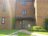 Marmet Avenue Flat to rent