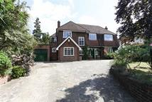 Detached home in Alleyn Road, Dulwich...
