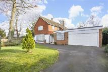 Detached house for sale in Alleyn Park, London