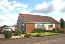 semi detached house in Highland Dykes Drive...