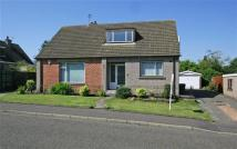 Detached home in Greenvale Drive, Falkirk