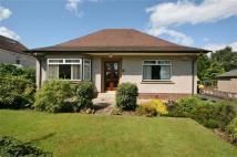 2 bed Bungalow in Little Denny Road...