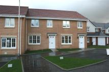 The Coupar II Terraced property for sale