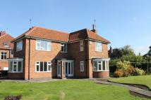 Detached house to rent in WESTLANDS GROVE, York...