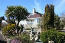 Detached Bungalow for sale in Five Acres, Charmouth...