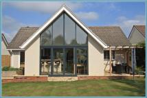 Detached Bungalow in Hill Crescent, Honiton...