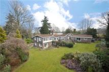 7 bed Detached property for sale in Hill Brow Road, Liss...
